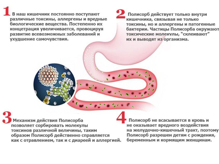 Восстановление организма после пищевого отравления