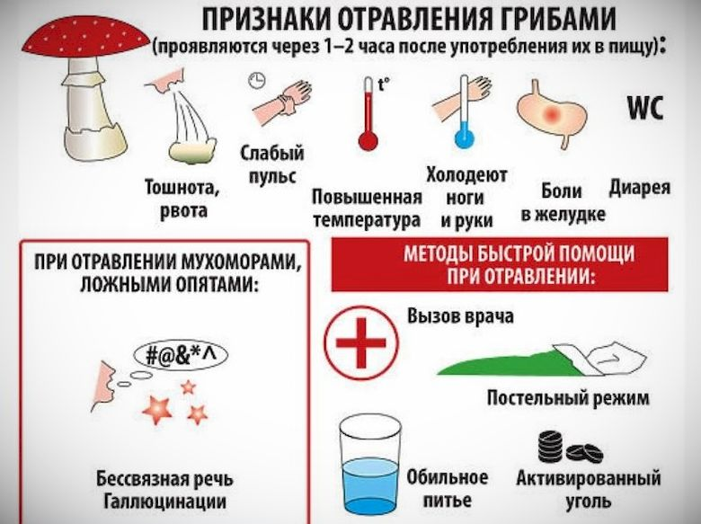 Признаки отравления грибами: через сколько они наступают