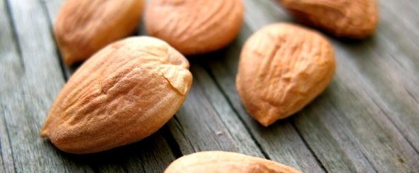 Ядра абрикосовых косточек. Польза и вред