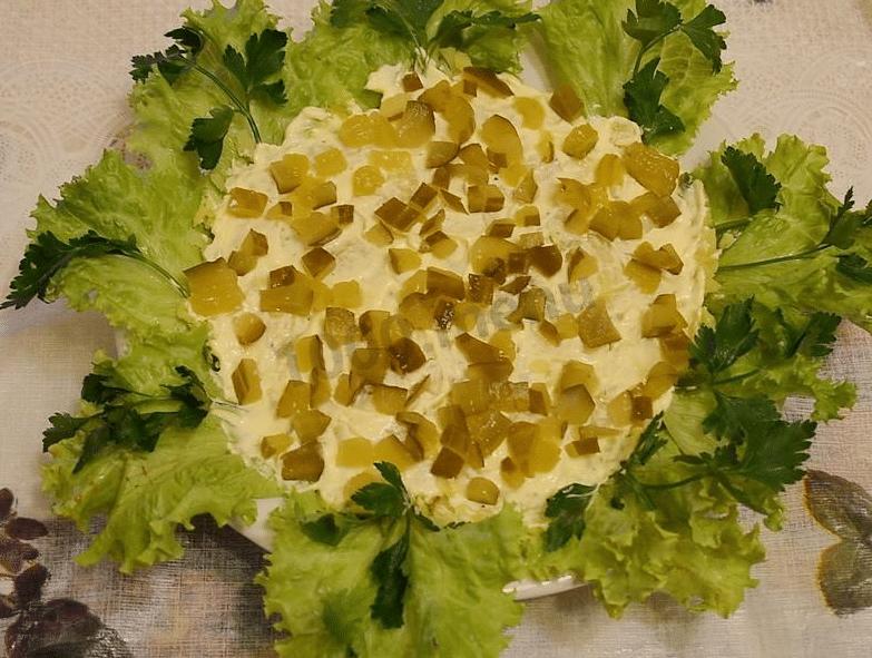 Салаты достойные соперничать с шубой и оливье. Рецепты вкусных слоеных салатов, вытеснившие селедку под шубой и оливье