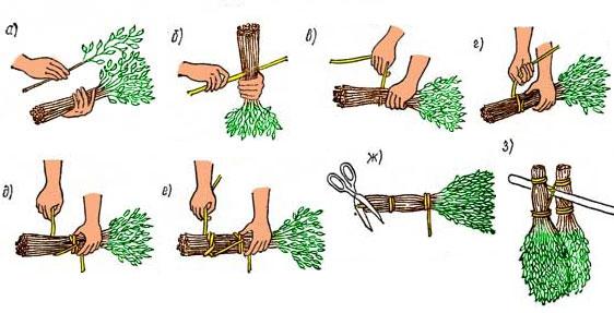 Как заготовить веники для бани: важные моменты 1-39