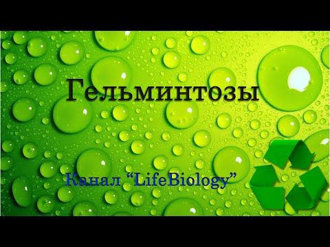 Медикаментозная профилактика гельминтоза у людей