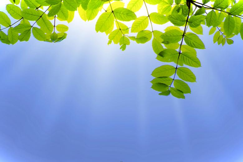 Что делать при солнечном ударе – правила оказания первой помощи